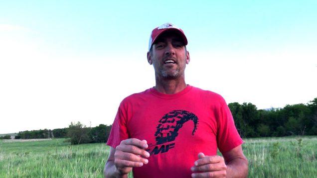6 Shotgun Coyote Kills!!  My Tip To Becoming a Better Predator Hunter!