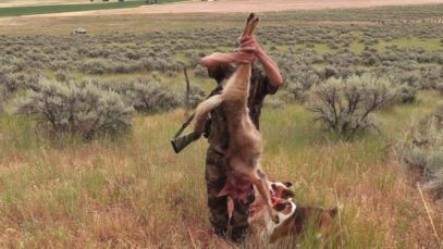 Coyote Hunting – Coyote Assassins Episode 9 – A DOUBLE down And a BLAZING fast SINGLE