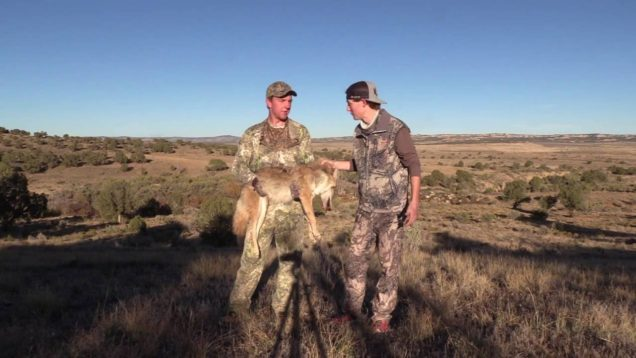 Coyote Hunting New Mexico Episode #4