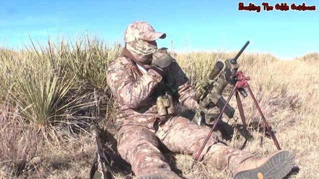 Coyote Hunting – Predator Hunting – Bucking The Odds 40