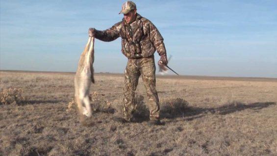 Coyote Hunting – Predator Hunting – Bucking The Odds 43.prproj.mp4