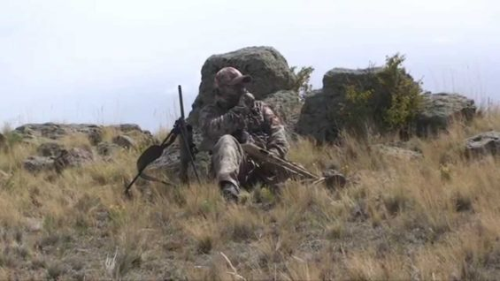 Coyote Hunting – Predator Hunting – Bucking The Odds Video 15