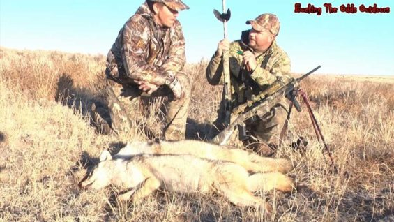 Coyote Hunting – Predator Hunting with Bucking The Odds Video 44.f4v