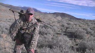 Predation Management 2014