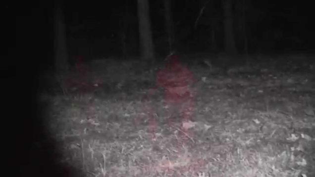 Predator Hunting  MFK Game Calls