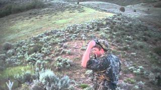 Utah Coyote Hunting 2013