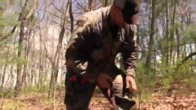 Virginia Crossbow Gobbler on a Windy Day