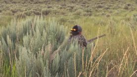 Coyote Hunting – Running Shots – Coyote Assassins Episode 12