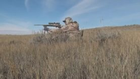Calling a Montana Coyote From a Distance With a Shotgun & Rifle
