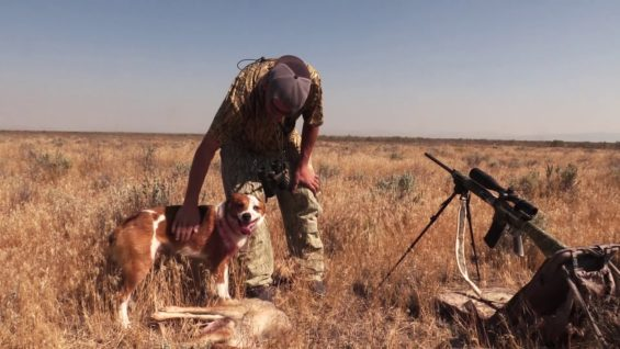 Coyote Hunting – Where it all began – Coyote Assassins – Episode 15