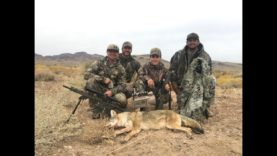 COYOTE CALLING J.R.'S FIRST COYOTE!!!
