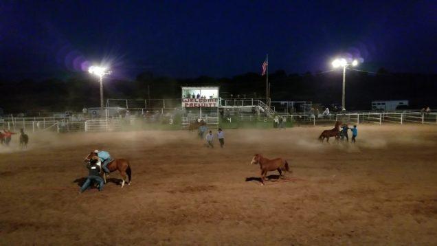 2017 Prewitt wild horse race