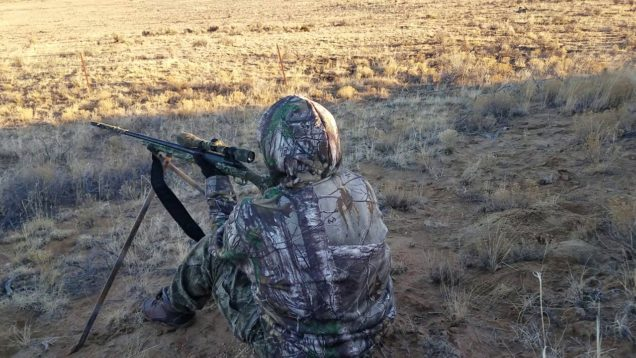 *71 yards* Coyote hunting in New Mexico
