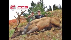 High Country Archery Elk Hunt – CCS Outdoor – Giant Bull with Drop Tine
