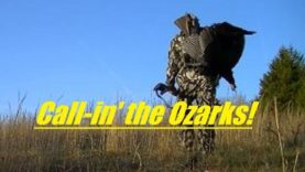 Turkey Hunting in the Ozarks of Missouri, SOLO, number 8….