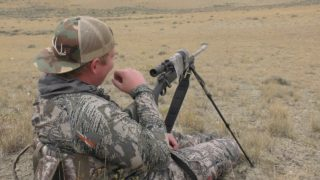 Decoy Doggin Episode #24 Coyote Snipers
