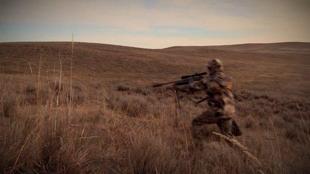 "Coyote Hunting, 3 Coyotes:  C.C. Season 2 E6 ""Coyote Ballet"""