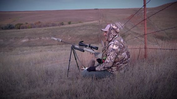 "Coyote Hunting, 5 Coyotes:  C.C. Season 2 E5 ""The Noob"""