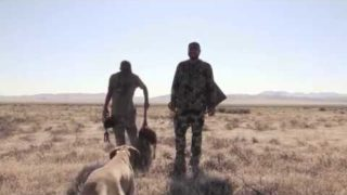 Coyote Hunting -ONE Furry Male, and a stand with Friends – Coyote Assassins Episode 41