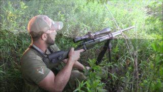 Coyote Huting Tips: Hunt Recap 1