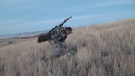 Coyote Hunting – Happy Thanksgiving – Coyote Assassins Episode 43