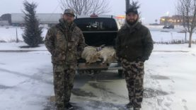 """COYOTE TOUR DAY 14 """"COLD AND SNOWY"""""""