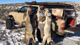 """COYOTE TOUR DAY 15 """" THE HALF WAY POINT"""""""