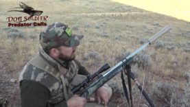 Hunting coyotes with handcalls – Coyote extremely close and how to handle it!