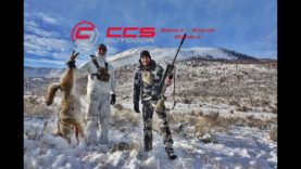 CCS Outdoor – Calling for Coyotes – Single – Single – Double