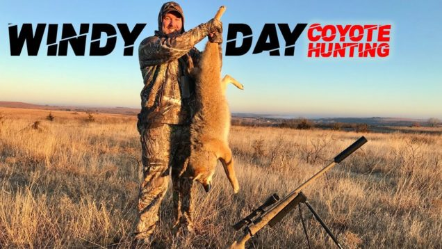Windy Day Coyote Hunting