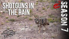 COYOTE HUNTING | S7 E2 Rainy Shotgun Coyotes