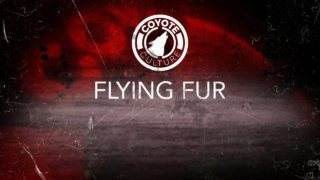 "coyote Hunting, 3 Coyotes:  C.C. Season 3 E3 ""Flying Fur"""