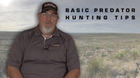 Predator Hunting Basics