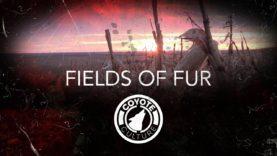 "Coyote Hunting, 2 Coyotes:  C.C. Season 3 E9 ""Fields of Fur"""