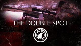 "Coyote Hunting, 3 Coyotes:  C.C. Season 3 E8 ""The Double Spot"""