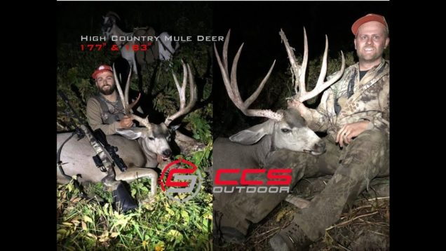 177″ & 183″ Wyoming High Country Mule Deer Hunt (DIY) w/ Pack Goats – CCS Outdoor – 640 & 200 Yards