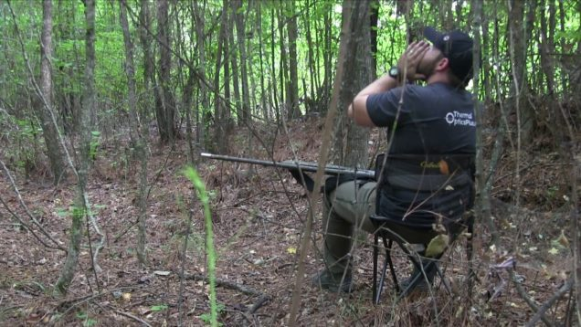 Coyote Hunting in the Briars & BS S8:E20
