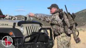 Nevada shotgun coyote – Coyote Hunting