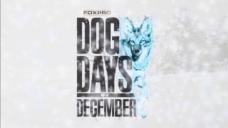 FOXPRO's Dog Days of December are Back!!!