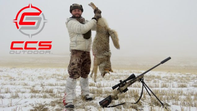 CCS Outdoor Calling for Coyotes – 6.5 Creedmoor – Foggy Days & Open Meadows – 2019