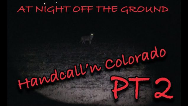 Coyote Hunting/ Handcalling at night off the ground