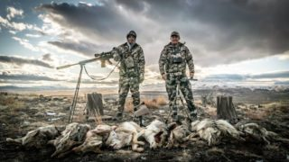 Coyote Hunting – Nevada in January – Coyote Assassins