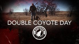 "Coyote Hunting, 4 Coyotes: C.C. Season 4 E7 ""Double Coyote Day"""