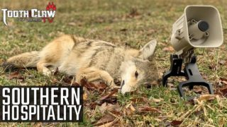 Southern Hospitality – Coyote Hunting