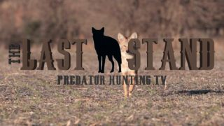 A Kansas bobcat and some late season coyotes!  The Last Stand S2-E8