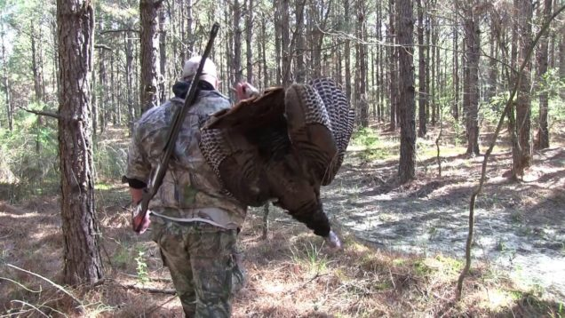 Self-Filmed Public Ground Turkey Hunt