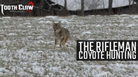 The Rifleman – Coyote Hunting
