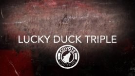 "Coyote Hunting, 3 Coyotes: C.C. Season 4 E11 ""Lucky Duck Triple"""