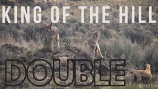 Decoy Dogging DOUBLE – King of the Hill – Season 3 Episode 4