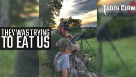 They Was Trying To Eat Us – Coyote Hunting